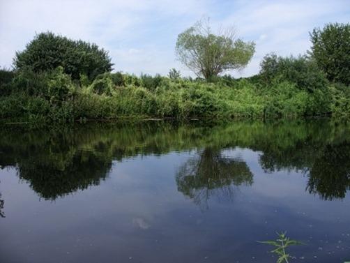 река пехорка