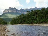 Рыбалка в Бразилии. Притоки реки Амазонка: Павлиний окунь