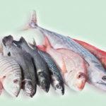 Пилинг ног с помощью рыб