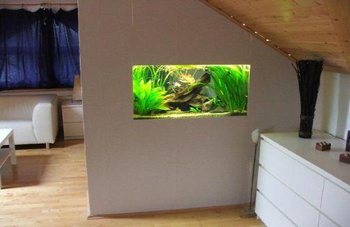 аквариум в стене