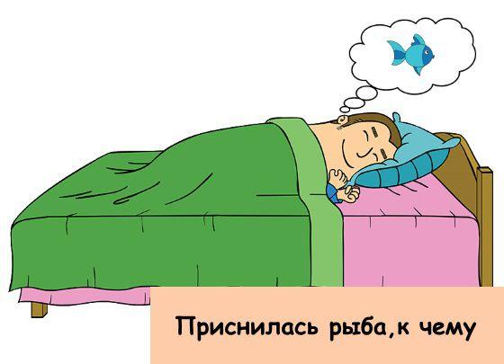 рыба сон