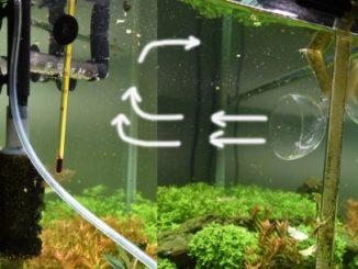 Движение воды в аквариуме